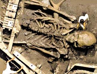 10 meter tall human skeleton - wikiislam, Skeleton