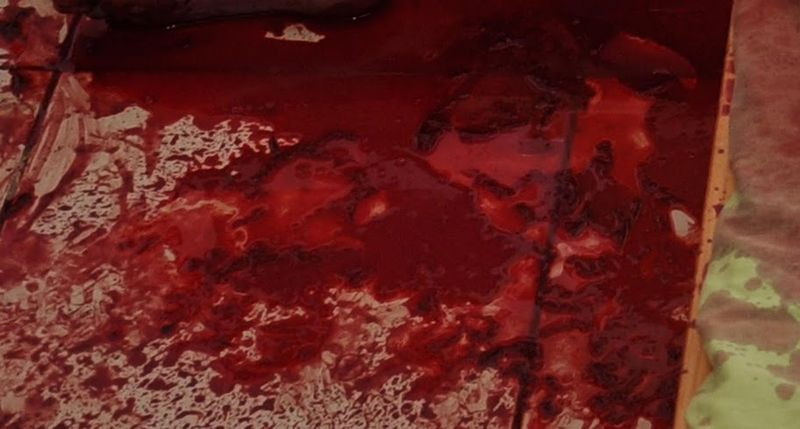 Eleven-year-old Yoav's blood.jpg