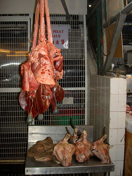 File:Images-animalsacrifice-0003.jpg